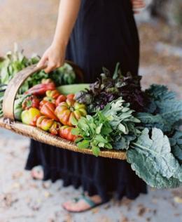 кислотно- щелочная диета Мифы