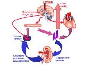 Как вылечить артериальную гипертензию или  гипертонию без лекарств?
