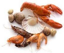 Глюкозамин добавки, как правило, сделаны из моллюсков (крабы, креветки, омары, раки)