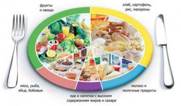 Теория сбалансированного питания и калорийный подход к питанию — лож