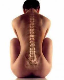 Иное понимание и решение болезни позвоночника и суставов