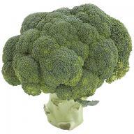 брокколи для похудения