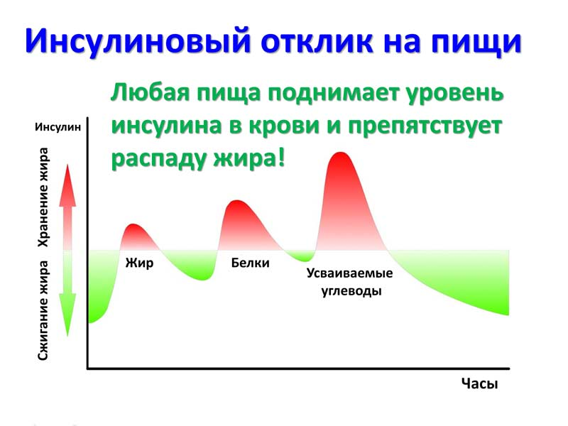 Не только углеводы стимулируют секрецию инсулина, но и все основные энергоносители тоже.