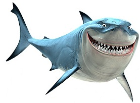 хондроитин добавки, как правило, сделаны из из хрящей коров и плавников акулы