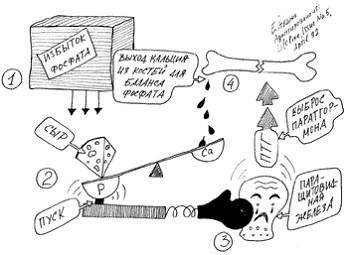 Схема возникновения почечной остеопатии при некорригированной гиперфосфатемии