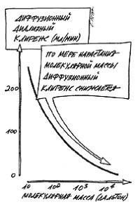 Зависимость диффузионного клиренса от молекулярной массы метаболитов